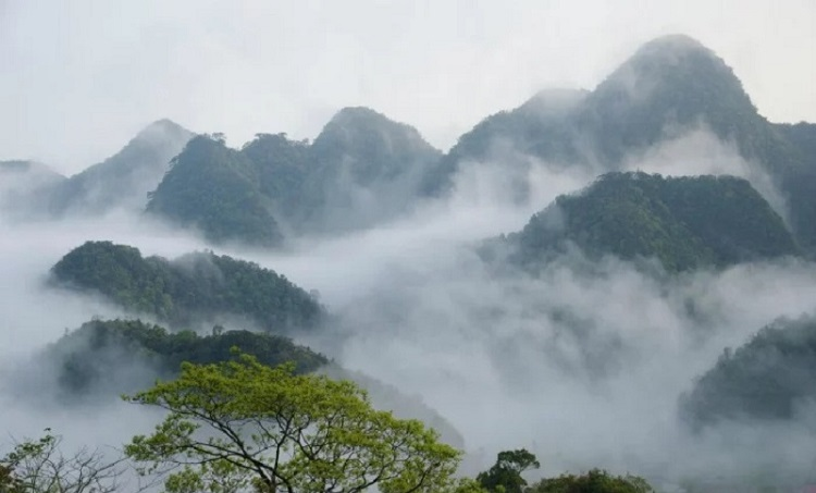 Đỉnh Mây Bạc ở Vườn Quốc Gia Cúc Phương