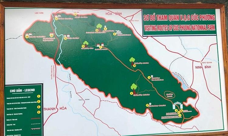 Bản đồ Du lịch đi rừng Cúc Phương