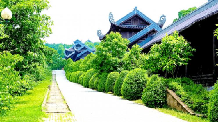 Cảnh quancaay xanh chùa Bái Đính