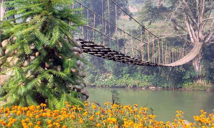 Cầu Mây Sapa tại bản Tả Van