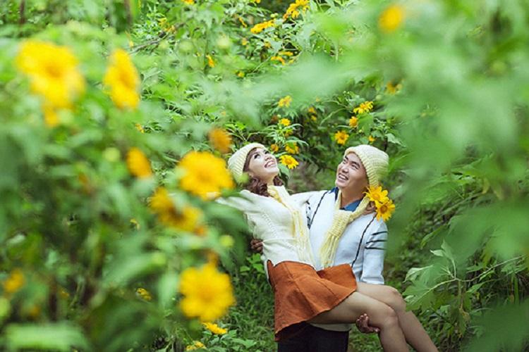Hoa Dã Quỳ - vườn quốc gia Ba Vì