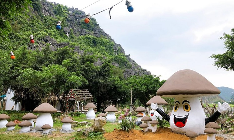 Vườn Nấm ở Hang Múa Ninh Bình điểm sống ảo mới