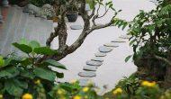 Tour Tam Chúc Địa Tạng Phi Lai 1 Ngày